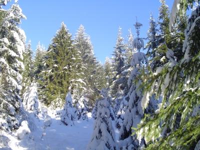 gite locations saisonniere 25